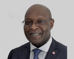 Dr Tony Chukwueke Director of Energy and Natural Resources Heirs Holdings South Africa
